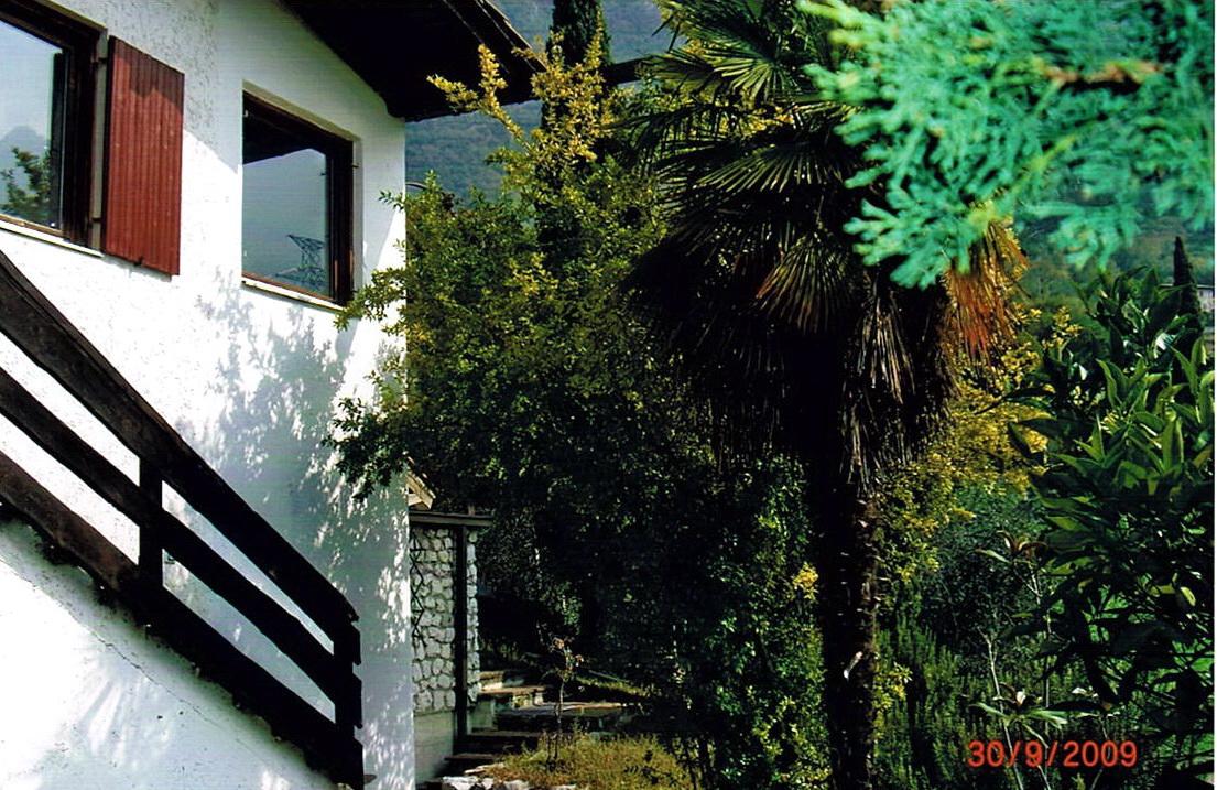Garten Ebene I